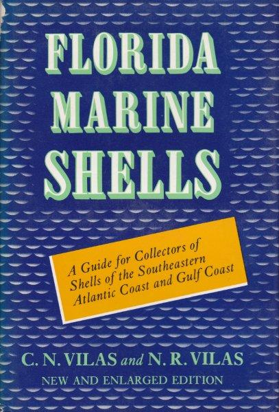 FLORIDA MARINE SHELLS